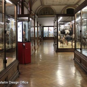Naturhistorisches Museum, Wien (AT)